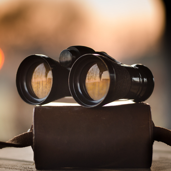 Assess your marketplace opportunity - Pattern Blog